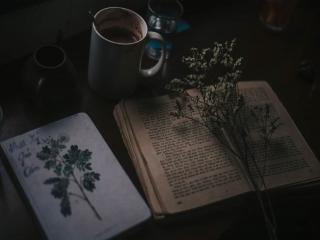 شعر و ترانه