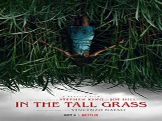 معرفی فیلم (In The Tall Grass (2019