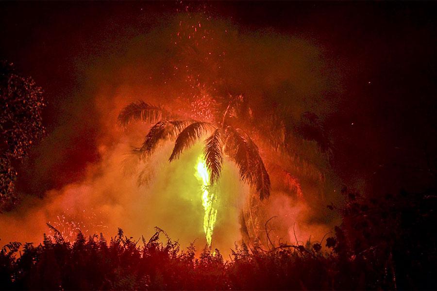 آتش سوزی در اندونزی