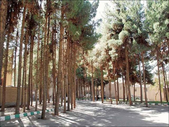 حقابه پارک چیتگر برای آبیاری درختان دوباره وصل شد