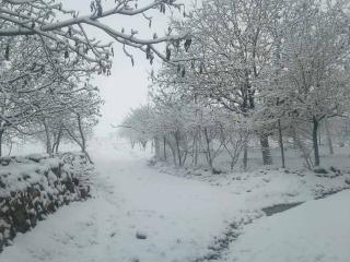 احتمال بارش برف در ارتفاعات البرز مرکزی و کاهش 7 درجه ای دما
