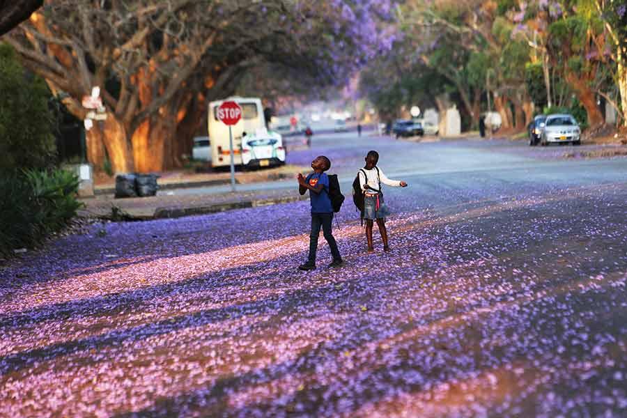 شهر هراره پایتخت زیمبابوه