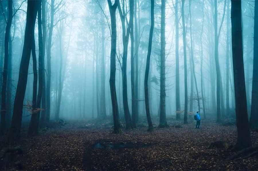 عکسی از عکاس آلمانی الکساندر شیتچاکا