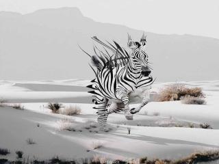 عکسهای جذاب سوررئال با استفاده از فتوشاپ