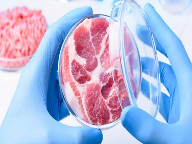 وزارت بهداشت : در حال بررسی پروژه گوشت مصنوعی هستیم