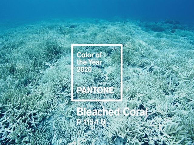 آبی کلاسیک، رنگ سال 2020