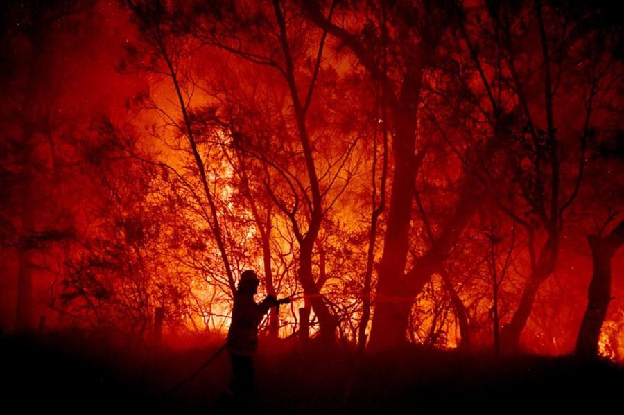 ادامه آتشسوزی جنگلی در استرالیا