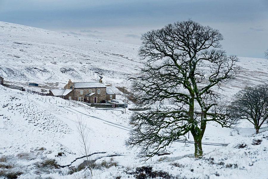 بارش اولین برف در انگلیس