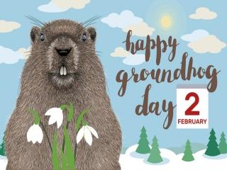 2 فوریه ، روز جهانی موش خرمایی