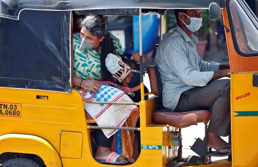 یک ریکشا (اتومبیل سه چرخه مسافربر) در شهر چنی هند