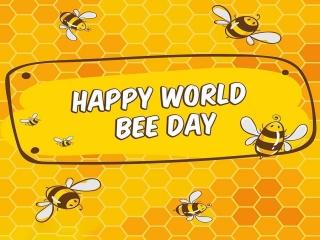 20 می ، روز جهانی زنبور