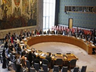 اعضای جدید شورای امنیت سازمان ملل معرفی شدند