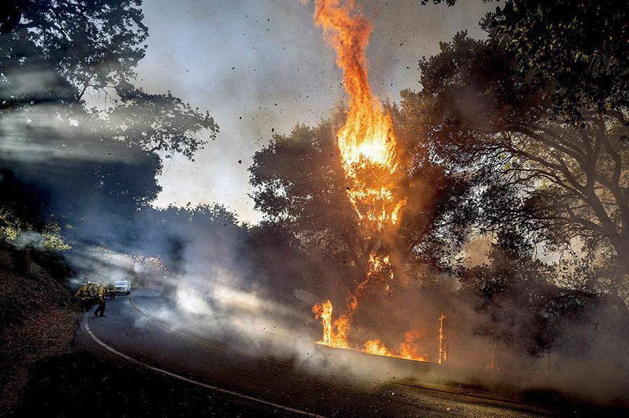 آتش سوزی در نزدیکی Gilroy، کالیفرنیا