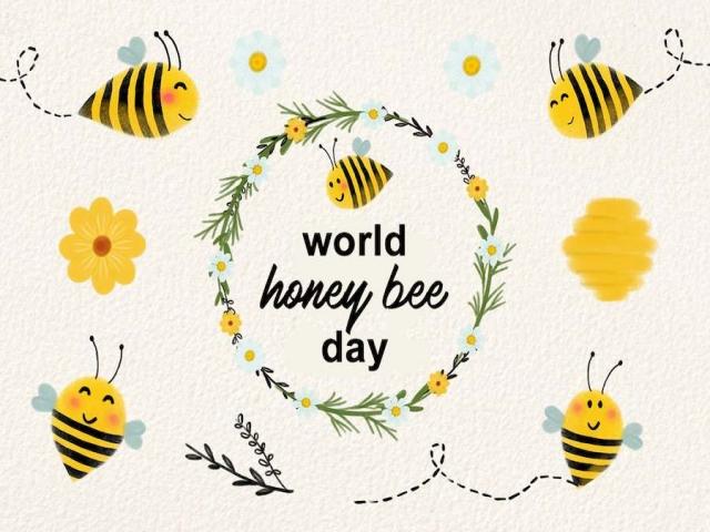 15 آگوست ، روز جهانی زنبور عسل