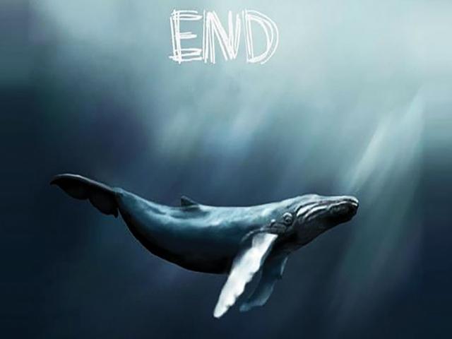 نهنگ آبی جان 3 جوان را در دریای خزر گرفت