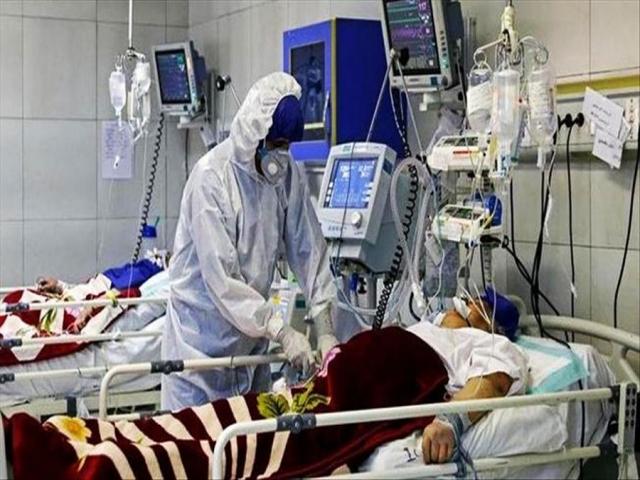 2313 مبتلا ، 127 فوتی و 3735 بیمار در حالت شدید کرونا در کشور