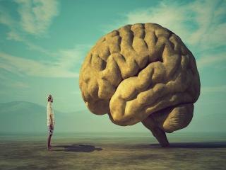پرش فکر و پرش تمرکز و ارتباط آن با امواج مغزی از نظر دانشگاه MIT