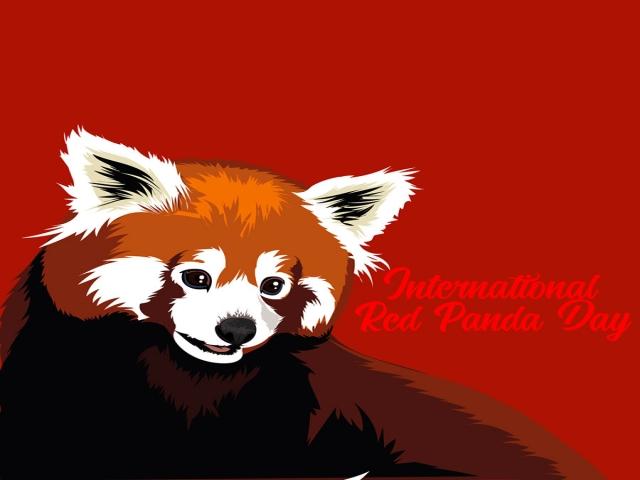 15 سپتامبر ، روز جهانی پاندای قرمز