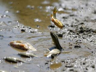 عکس های دیدنی 9 مهر 99