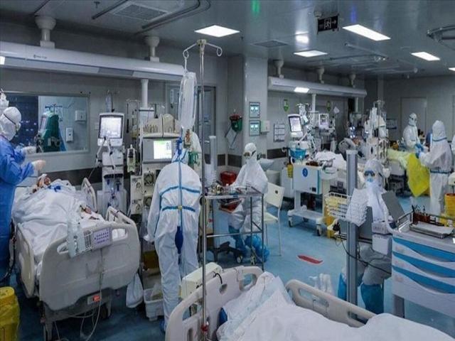 دکتر مردانی: تختی برای بیماران کرونایی باقی نمانده